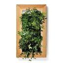 PIANTA×STANZA(ピアンタ・スタンツァ)マイギャラリー・Lサイズ500×900mmクリア(植物セット:縦4段)