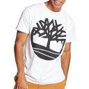 ティンバーランド Timberland メンズ Tシャツ トップス【Seasonal Graphic T-Shirt】White Tree