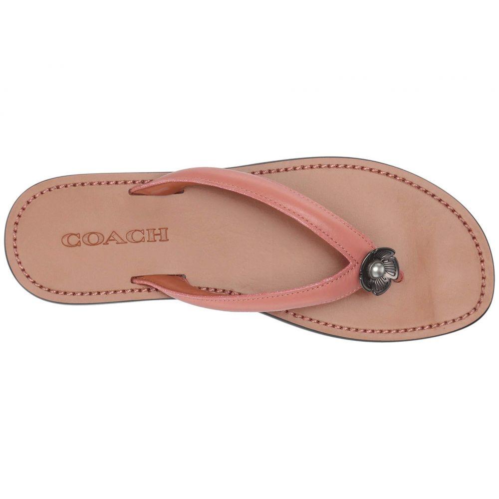 コーチ COACH レディース シューズ・靴 ビーチサンダル【Tea Rose Thong Sandal - Leather】Melon