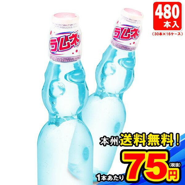 駄菓子, ラムネ 1016() 3016(480)KNKATN160412 ()
