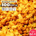【Bセット】{ココナッツオイルタイプ}キャラメルポップコーン 約100...