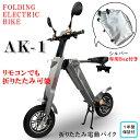 【オープン記念15%OFF】電動バイク 専用バッグ付(シルバ