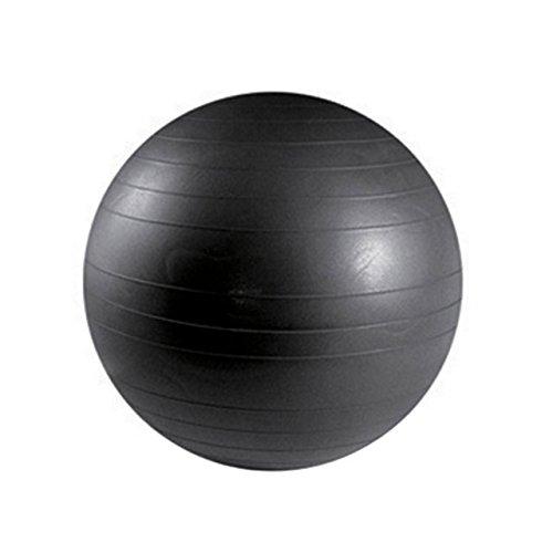 ベルフィット・ビガーボール55 ( BE-AB55 / SNL10253055 )【 サンラッキー 】【 サンラッキー ヨガボール 】【QBH33】