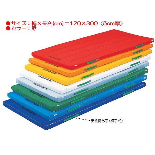 カラーペットマットすべり止付(枚)(赤) EKM048 (JS83938) 送料ランク【E】 【エバニュー】【QBH12】:Field Boss