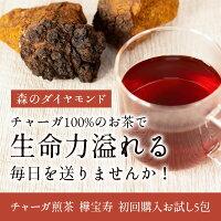 チャーガ健康園・樺宝寿ティーバッグ