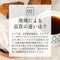 チャーガ健康園・樺宝寿ティーバッグ30包