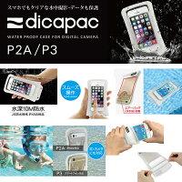 ディカパックP2AP3