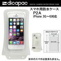 ディカパックP2A