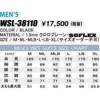 WSL-38110