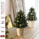 クリスマスツリー/飾り過ぎないことが、シンプルに!かつエレガントに保つ秘訣!クリスマスホリ...