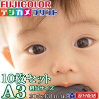 A3サイズ(305X431mm)