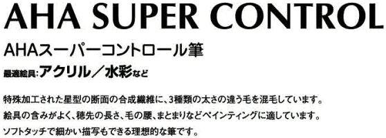 スーパーーコントロール筆ラウンドディテール2号2900202