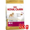 【最大350円OFFクーポン♪】【正規品】ロイヤルカナン 柴犬 子犬用 《生後10ヵ月齢までの子犬用》 3kg