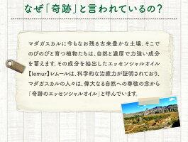 エッセンシャルオイル【lemur】レムール「ゼラニウムGERANIUM」アロマ・マダガスカル産・天然精油・オーガニック