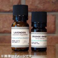 よりローズに似た、甘くフレッシュな花の香りローズゼラニウム 12MLエッセンシャルオイル/精油/...