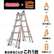 長谷川工業 アルタワン250シリーズ LG-10303 伸縮式脚立兼用はしご ALTA-ONE ※配達時間指定不可【在庫有り】【あす楽】