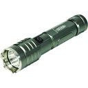 """■日動 充電式LED""""ハンディーライト6W""""〔品番:SL-6W-CH〕..."""
