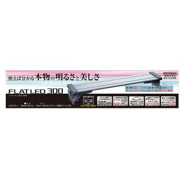 コトブキ フラットLED 300 【水槽/熱帯魚/観賞魚/飼育】【生体】【通販/販売】【アクアリウム/あくありうむ】