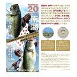 【WILD FINS】琵琶湖南湖ピンポイントマップ&ウィードマップ 大仲正樹 奥村哲史
