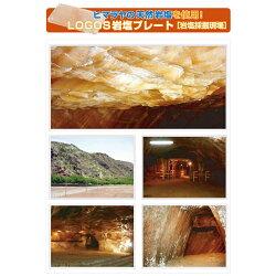 【ロゴス】LOGOS岩塩プレート(81065990)