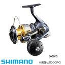 シマノ 15 ツインパワーSW 8000HG