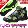 [RYKA]ライカ フィットネスシューズ TENACIOUS<テナシオス> E6643M-2300 〔ライトグリーン×ブラック〕(22.0〜28.0cm/レディース/メンズ)【ダンスシューズ】【17SS03】【正規品】/送料無料