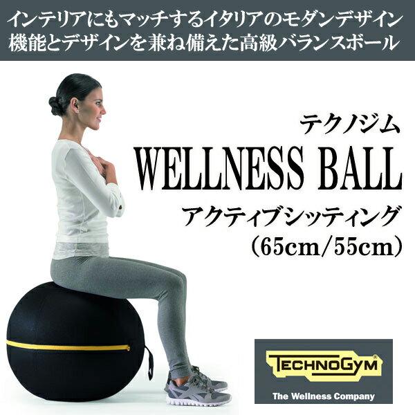 テクノジム アクティブシッティング バランスボールチェア(55cm) WELLNESS BALL  [Technogym]:Fitness Online フィットネス市場