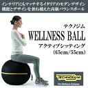 テクノジム アクティブシッティング バランスボールチェア(55cm) WELLNESS BALL 【当店在庫品】【送料無料】 [Technogym]