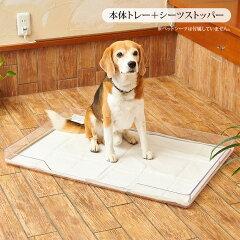 犬 トイレ 大型