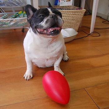 頑丈で壊れにくく経済的なおもちゃ 『エッグミニ』 1個 【犬用おもちゃ 小型犬 中型犬 大型犬用 レッド イエロー】