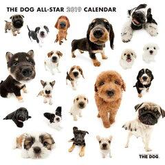 【予約:8月中旬頃】アーリスト THE DOG 国内版 2019年オールスターカレンダー シールつき[ペットガーデン紀三井寺]