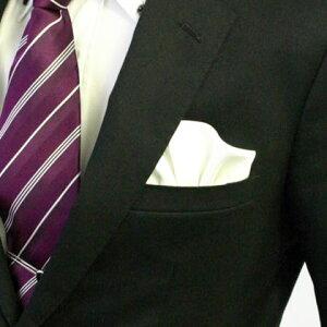 フィックスポンパッフド1【ホワイト】fixponポケットチーフ
