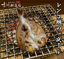 レンコ鯛の一夜干し(200gサイズ/1枚21cm)若狭日本海福井干物産直