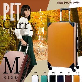 PET7156-m
