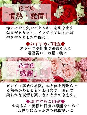 Antietto(アンティエット)|花言葉赤・ピンク|プリザーブドフラワー