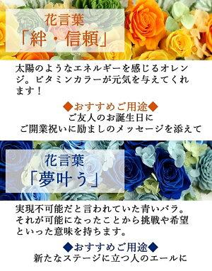 Antietto(アンティエット)|花言葉オレンジブルー|プリザーブドフラワー