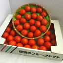 """高知県産""""夜須のフルーツトマト""""2〜4Sサイズ(35〜58玉入り)1箱少々訳あり"""