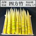 京たけのこ!「竹の子ずくし3種6袋セット」【楽ギフ_のし】