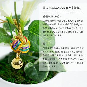 日本の十二季ひと枝