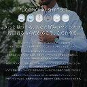【限定SALE★2/2(日)23:59迄】ワイシャツ 長袖 5枚セット 送料無料 形態安定 7種類から選べる メンズ yシャツ ドレスシャツ セット シャツ ビジネス ゆったり スリム おしゃれ カッターシャツ ホリゾンタル/flm-l01