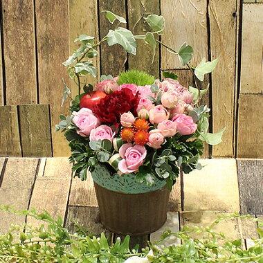 フラアート花門今月の花