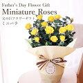 【60代男性】黄色いバラを父の日に!感謝の気持ちが伝わるおすすめは?