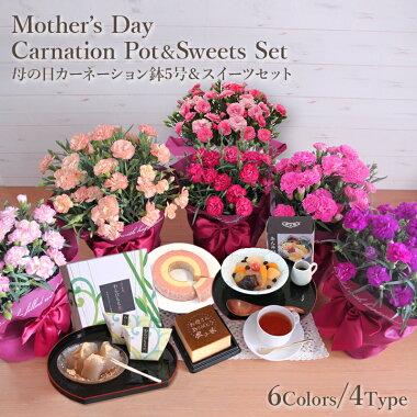 母の日、におい桜鉢、鉢植、スイーツセット、カステラ