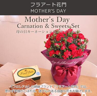 母の日、カーネーション鉢植、スイーツセット