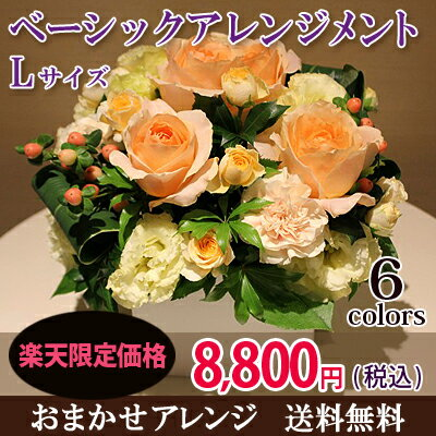 花 ギフト お祝いベーシックアレンジメントLサイズ(6色から選べます!)あす楽 送...