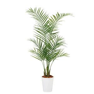 人工観葉植物 アレカヤシ PE 130 (器:クォーツ180)  99159|フェイクグリーン イミテーション インテリア オフィス 店舗 造花 おしゃれ 観葉植物 大型 観葉植物 おしゃれ 観葉植物 インテリ