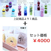 和菓子+プリ付Round/Halfsize3type/Halfsize3color