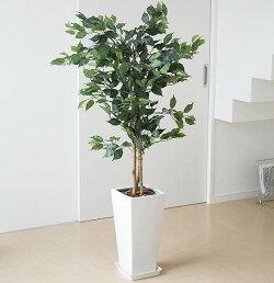 人工観葉植物 ベンジャミン 陶器鉢