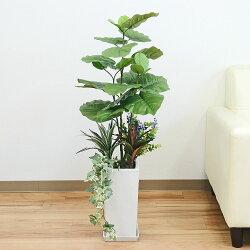人工観葉植物 フィカス・ウンベラータ 陶器鉢