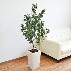 人工観葉植物 オリーブ 陶器鉢付き
